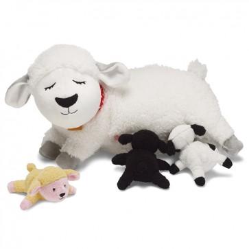 Mamma pecora Nola con cuccioli