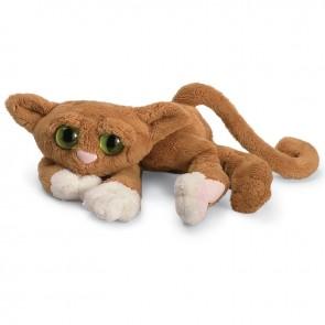 Lanky Cats v košari